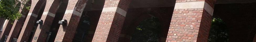 NYU Launches New Public Interest LL.M. Fellowship
