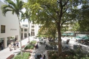 "Students meet at Miami Law's central courtyard, known as ""The Bricks,"" to study, network and relax."