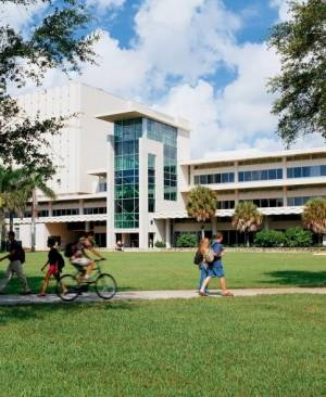 UM's central Richter Library is right next to the law school and our law library has one of the most comprehensive collections in the Southeastern U.S. and is particularly well-known for its impressive international law and foreign law collections.