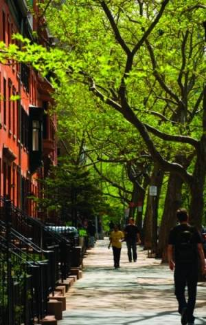 The tree-lined streets of Brooklyn Heights end at a promenade, and a spectacular view of New York Harbor.