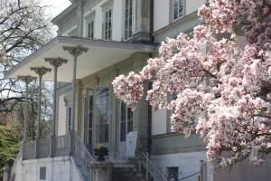 Geneva Academy's headquarters, Villa Moynier, in the spring.
