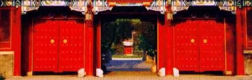 Peking University PKU