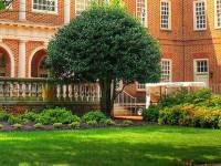 Regent Law Adds Concentrations to its MA in Law Program