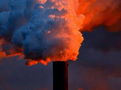 Climate Change Buoys Environmental Law LL.M.s