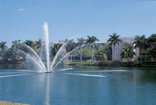 Students walk around or study next to Lake Osceola located on UM's campus right across from the law school.