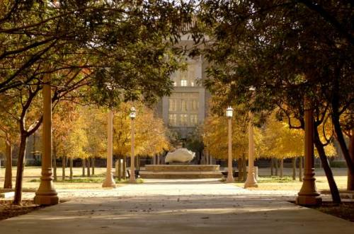 Texas Tech University's beautiful campus.
