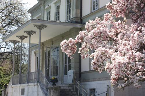 Geneva Academy's headquarters, Villa Moynier, in the spring.