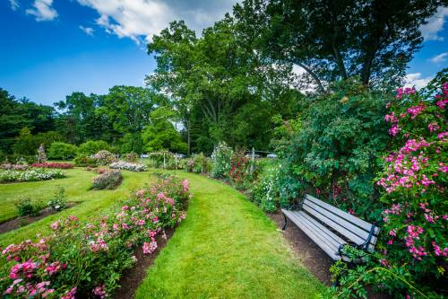 Hartford's Elizabeth park, just steps away from UConn Law.