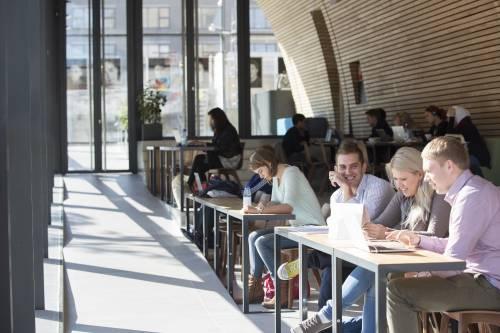 Study space at the Erasmus Paviljon