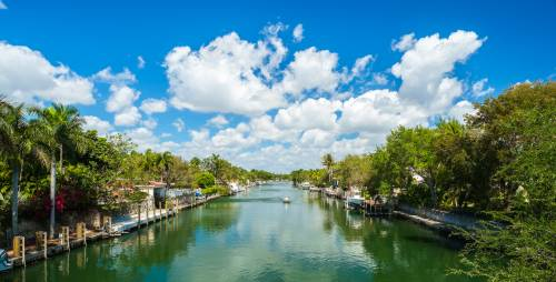 The law school is in Coral Gables - a residential area that offers the benefits of city living in a suburban setting filled with trees and canals.