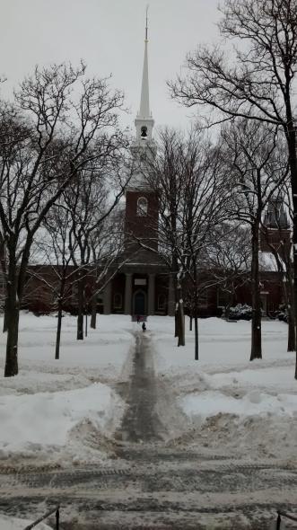 Harvard University Harvard Law School Hls Llm Guide